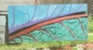 Franklinton Garden project