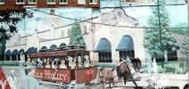 Mule Trolley